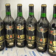 6 sticle vin vechi, de collection( LOT: Nr. 8 ) recoltare 1970 - Vinde Colectie, Aroma: Sec, Sortiment: Rosu, Zona: Europa