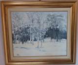 Tablouri de colectie-N.BLEI-Iarna in Colentina,ulei/c,54x64cm, Natura, Impresionism