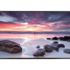 Televizor LED LG, Dis, Public, 86'', 86UH5C-B, UHD, HDMI, DVI-D, USB 3.0, negru