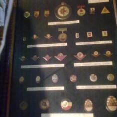 Colectie insigne si medalii pioneri