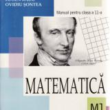 MATEMATICA. MANUAL PENTRU CLASA A XI A M1 de EUGEN RADU - Manual scolar all, Clasa 10, All