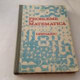 Probleme De Matematica Pentru Gimnaziu - I. Petrica C. Stefan St. Alexe, RF1 - Carte Matematica