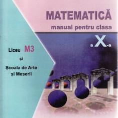 MATEMATICA. MANUAL PENTRU CLASA A X A LICEU SI M3 SAM de MIHAELA SINGER - Manual scolar all, Clasa 10, All