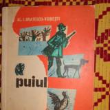 Puiul ( ilustratii Noel Roni ) 70pag/an 1970- Al.Bratescu Voinesti - Carte de povesti