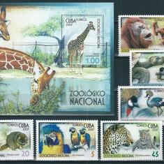 CUBA 2007 - FAUNA ZOO - SERIE DE 6 TIMBRE+BLOC NESTAMPILAT - MNH / fauna190