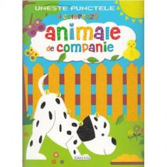 Activitati - Uneste Punctele - Animale de Companie - Carte de colorat