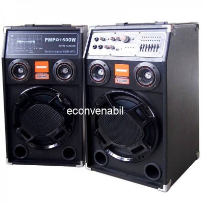 Boxe Active cu Bluetooth, USB, Karaoke, Chitara DP284BT 240W foto