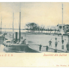 3917 - L i t h o, Tulcea, SULINA, ships, harbor - old postcard - unused - Carte Postala Dobrogea pana la 1904, Necirculata, Printata
