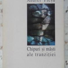 Chipuri Si Masti Ale Tranzitiei - Andrei Plesu, 400175 - Carte Politica