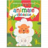 Activitati - Uneste Punctele - Animale Salbatice - Carte de colorat