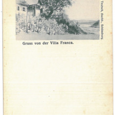 3910 - L i t h o, Mures, SIGHISOARA, vila Franca - old postcard - unused - Carte Postala Transilvania pana la 1904, Necirculata, Printata