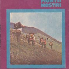 FLORIN ROMAN - MUNTII VRANCEI ( CU HARTA )