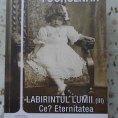 Labirintul Lumii (iii) Ce? Eternitatea - Marguerite Yourcenar, 400505 - Roman