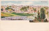 BUCURESTI  VEDERE  GENERALA  LITOGRAFIE  CIRCULATA 1901  K. U. K. POSTA MILITARA