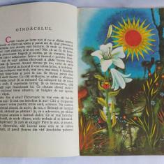 Emil Girleanu - Din lumea celor care nu cuvinta, 1980, Junimea, carte de povesti