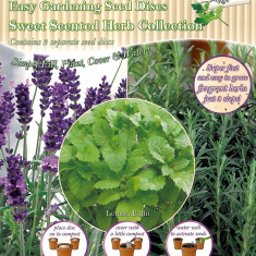 Mix de discuri cu seminte de plante aromatice - Easy Garden Lemon Balm