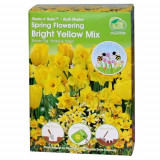 Shake'n Rake Bulbi - Bright Yellow