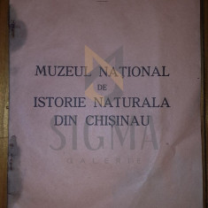 IOSIF LEPSI, MUZEUL NATIONAL DE ISTORIE NATURALA DIN CHISINAU, CHISINAU, 1934