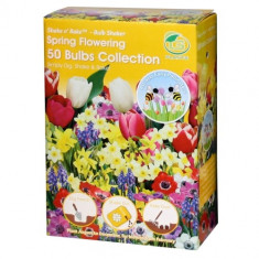 Shake'n Rake Bulbi - 50 bulbs Collection