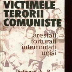 LICHIDARE-Victimele terorii comuniste - Autor : Cicerone Ionitoiu - 136105 - Carte Politica