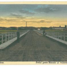 3940 - Buzau, RAMNICU SARAT, Bridge - old postcard - unused - Carte Postala Muntenia 1904-1918, Necirculata, Printata