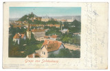 3929 - SIGHISOARA, Mures, Litho - old postcard - used - 1901