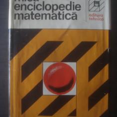 MICA ENCICLOPEDIE MATEMATICA {1980} - Carte Matematica