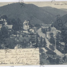 3930 - Prahova, SINAIA, salesman - old postcard - used - 1904 - Carte Postala Muntenia pana la 1904, Circulata, Printata