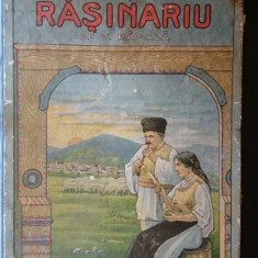Monografia satului Rasinariu, V. Pacala - Carte Monografie