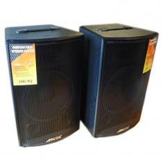 Boxe active, intrare USB, 2 intrari microfon - Boxa activa