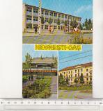 Bnk cp Negresti-Oas  - Vedere - necirculata - marca fixa, Printata