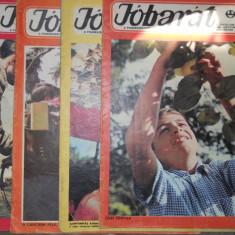 JOBARAT ANUL 1967-68 LOT 5 REVISTE CUTEZATORII IN LIMBA MAGHIARA - 4 LEI BUC - Reviste benzi desenate Altele