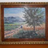 Tablou scoala baimareana BELA BALLA - Pictor roman, Peisaje, Ulei, Realism
