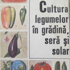 Cultura legumelor in gradina, sera si solar -Zaharia Suciu, Teodor Plesca, . - Carte gradinarit
