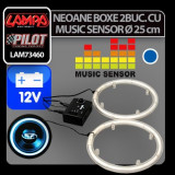 Neoane boxe cu music senzor NR-25,