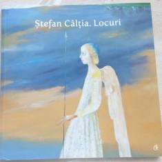 STEFAN CALTIA:LOCURI/ALBUM MUZ. DE ARTA TIMISOARA 2015(V.NEUMANN/D.C.MIHAILESCU) - Album Arta