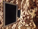 Monitor Noc 15 inch