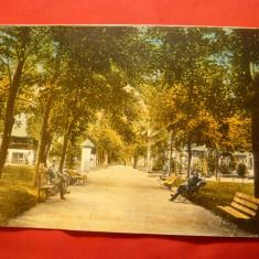 Ilustrata Calimanesti-Caciulata-Parcul Ostrovului ,1939 , color