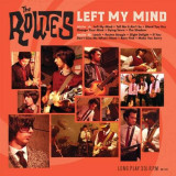 Routes - Left My Mind ( 1 VINYL ) - Muzica Pop