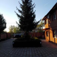 Vila cu teren - Casa de vanzare, 180 mp, Numar camere: 5, Suprafata teren: 1130