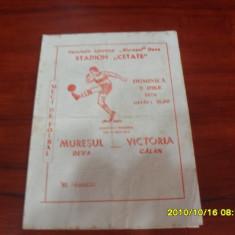 Program Muresul Deva - Victoria Calan - Program meci