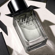Parfum Original Burberry Mr. Burberry EDT 100ml Tester + CADOU - Parfum barbati Burberry, Apa de toaleta