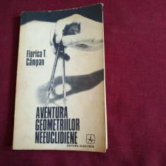 FLORICA T CAMPAN - AVENTURA GEOMETRIILOR NEEUCLIDIENE