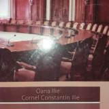 OANA / CORNEL CONSTANTIN ILIE - ISTORIA PARLAMENTULUI - Istorie