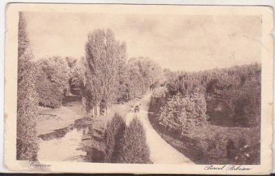 bnk cp Craiova - Parcul Bibescu - uzata interbelica foto