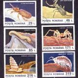 Timbre ROMANIA 1993/*1332 = DESCOPERIRI DIN FAUNA CAVERNICOLA, PESTERA MOVILE, Stampilat