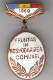 Insigna Fruntas in gospodarirea comunei 1969, Romania de la 1950