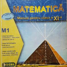 MATEMATICA MANUAL PENTRU CLASA A XI-A M1 - Gabriela Constantinescu - Manual scolar, Clasa 11