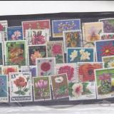 Diferite timbre st, din diferrite tari flori - Timbre Romania, Stampilat