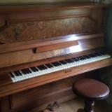 Pianina Loos Siengeny W.